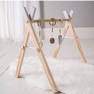 Play & Activity Gym